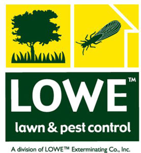 Vacation Rental Pest Control